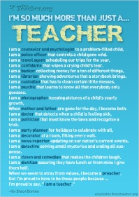 not only a teacher