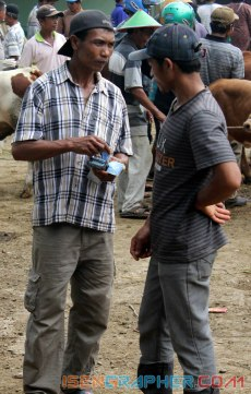 a man counting the money after sold the cow